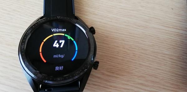 運動履歴(ワークアウト記録)VO2max