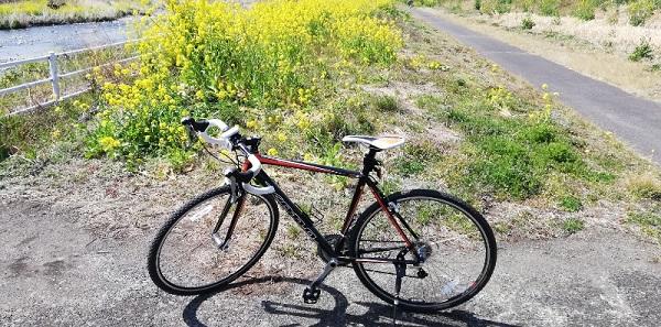 シクロクロスバイクで行く・サイクリングロード春の風景