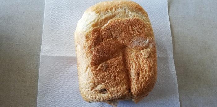 パンケースからレーズン食パンを出した状態