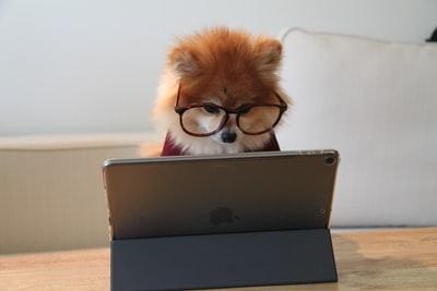 どんな情報収集にパソコンが必要か?