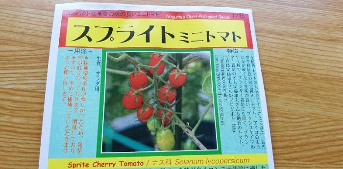 トマト(スプライトミニトマト)