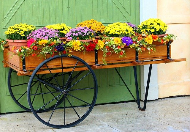 【家庭菜園】春の種まき2回目!プランターでも簡単に育てられそうな野菜!