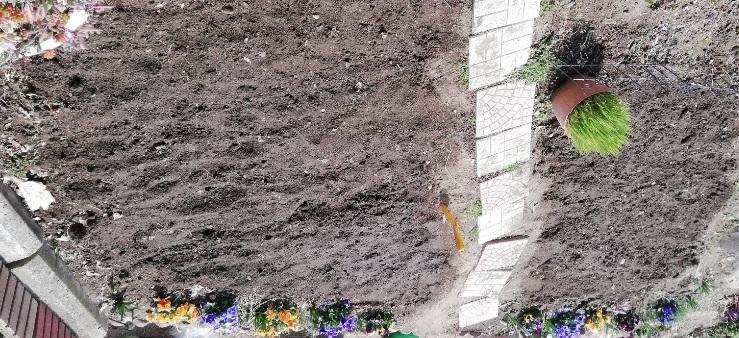 万能小ねぎ、大場にら、葉大根、紅白二十日大根、ガーデンレタスミックス、ルッコラを地まきした