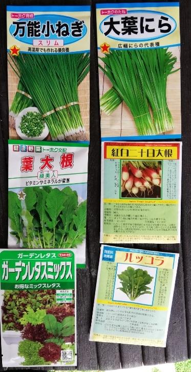 プランターでも簡単に育てられそうな野菜!